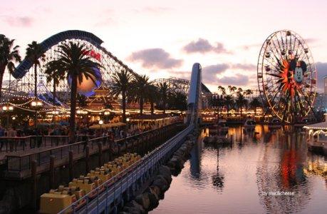 California Screamin 2-web.jpg
