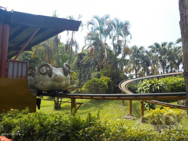Bada Forest Paradise Impressionen