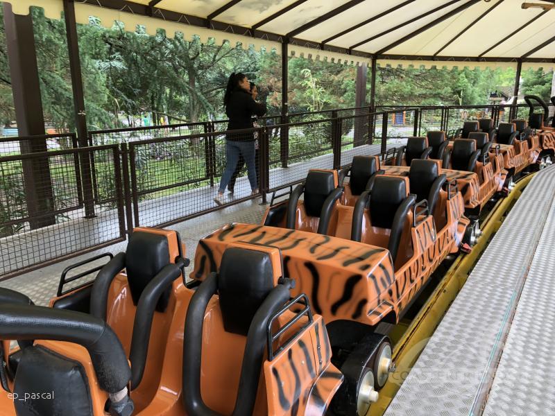 Zoo Safaripark Stukenbrock Impressionen