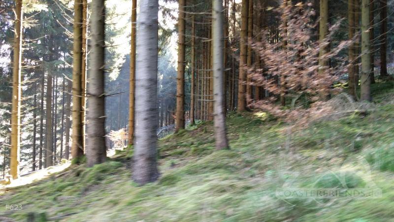 Sternrodler im Park Erlebnisberg Sternrodt Impressionen