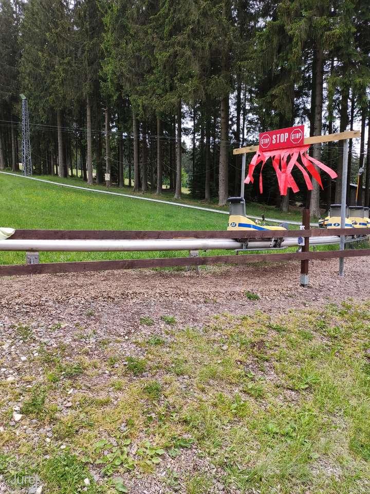 Sommer-Rodelbahn Erbeskopf im Park Wintersportzentrum Erbeskopf Impressionen