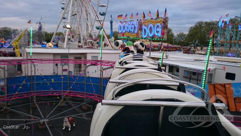 Doggy Dog im Park Zinnecker M. Impressionen