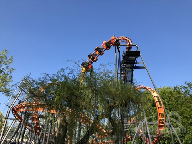 Cobra im Park Tivoli Friheden Impressionen