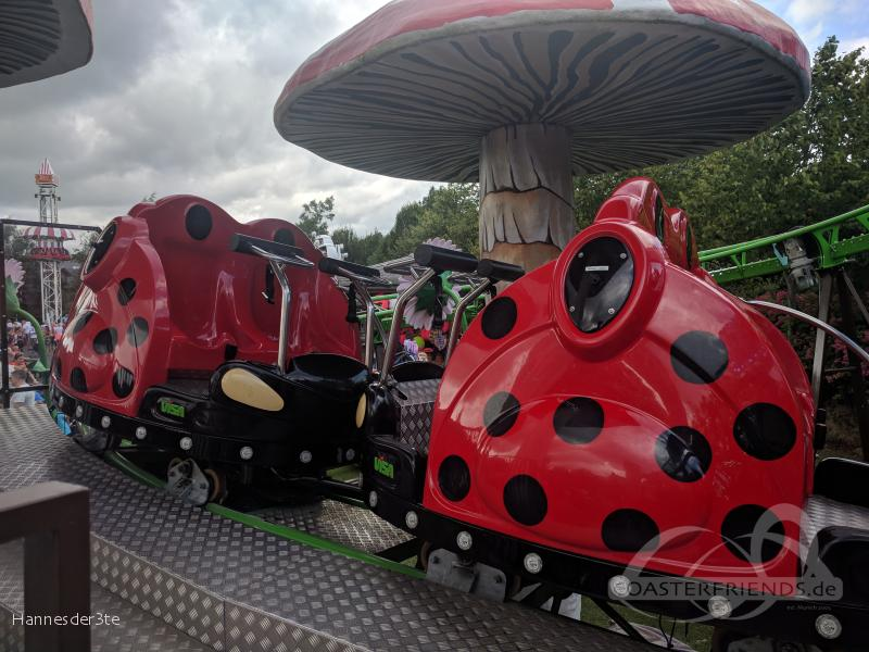Tayto Park Impressionen