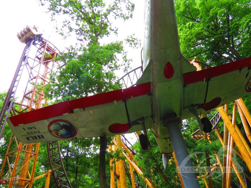 Falcon im Park Duinrell Impressionen