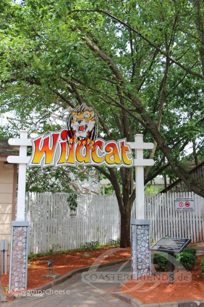 Wildcat im Park Lake Compounce Impressionen
