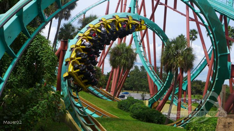 Kumba im Park Busch Gardens Tampa Impressionen