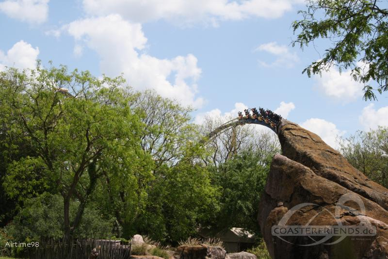 Montu im Park Busch Gardens Tampa Impressionen