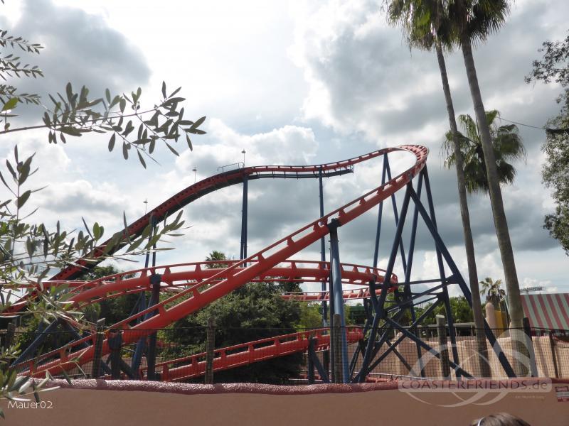 Scorpion im Park Busch Gardens Tampa Impressionen