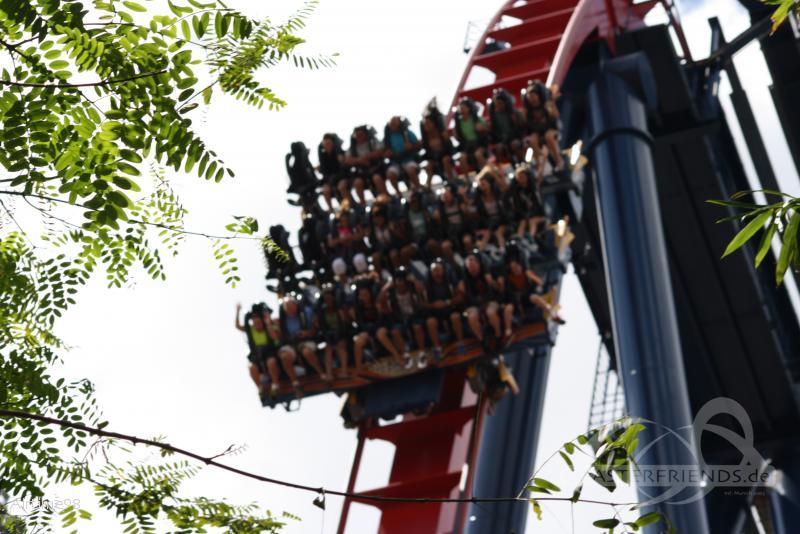 SheiKra im Park Busch Gardens Tampa Impressionen