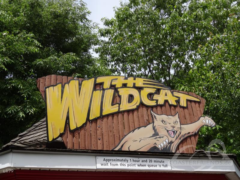 Wildcat im Park Hersheypark Impressionen