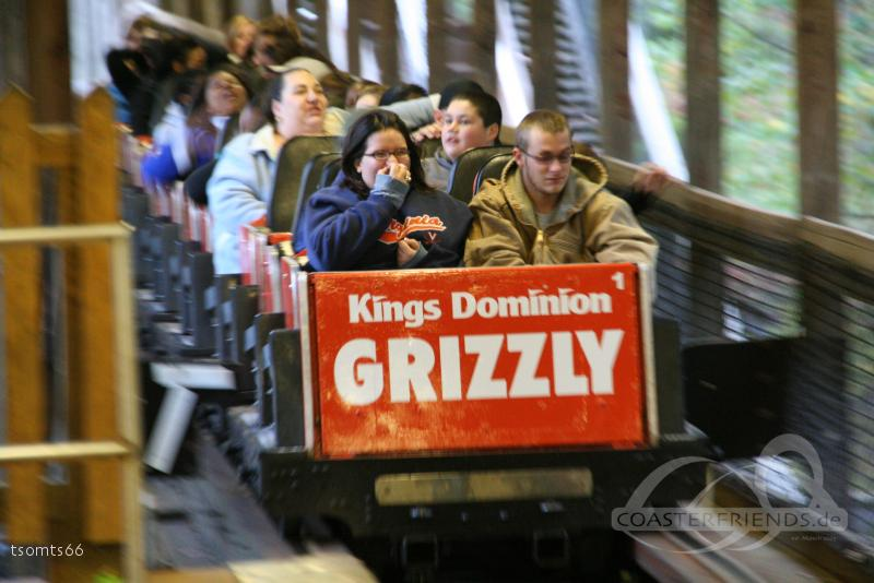 Grizzly im Park Kings Dominion Impressionen