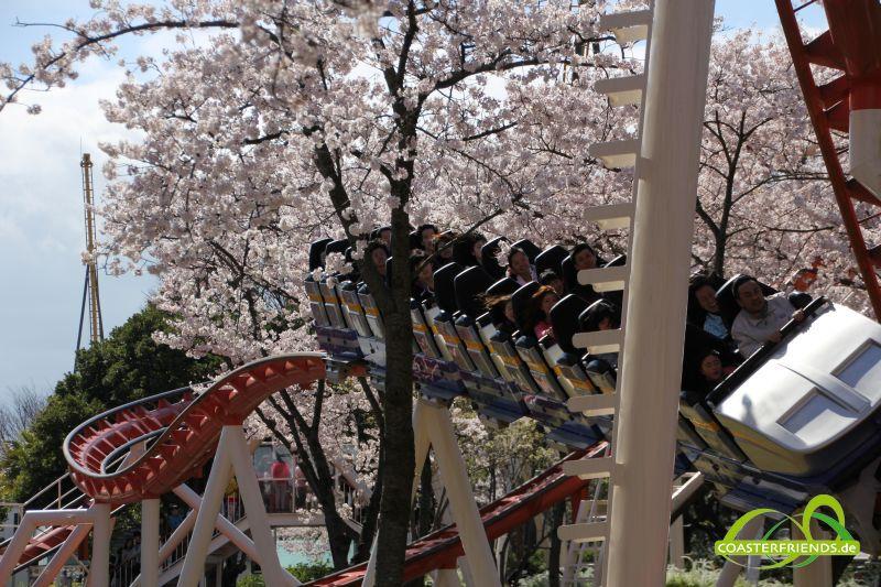 Nagashima Spa Land Impressionen