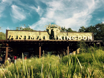 Walt Disney World - Disney's Animal Kingdom Impressionen